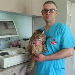 gydytojas su klinikos gyventoja kate Dusia