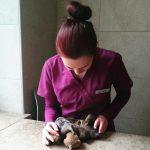 vet.gyd. Olga su mažyliais pupuliais